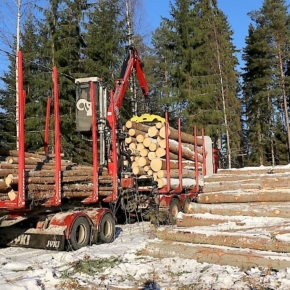 Roundwood prices rise in Finland