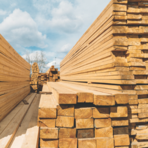 US reduces antidumping duties on Canadian timber
