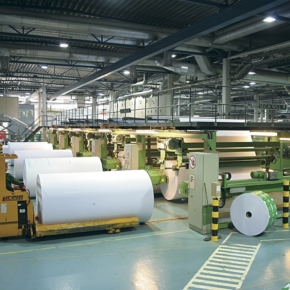 Wood pulp production increased by 6.3% in Russia in 2020