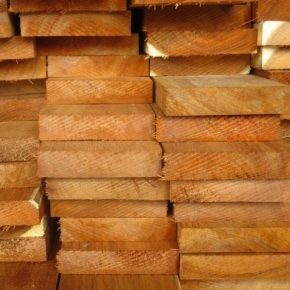 US tropical sawnwood imports plunge in 2020