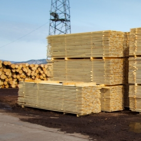 Russia reduced its export of sawn timber by 6.6% in 2020
