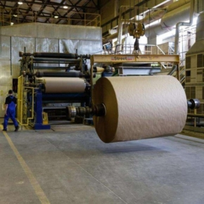 Wood pulp production increased by 1.3% in Russia in January 2021