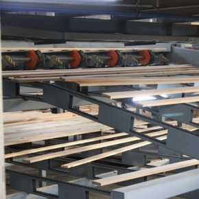 Belarusian sawmill Kimabel to add new sorting line