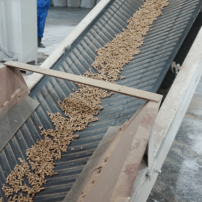 A wood pellet production site with a capacity of 80,000 tons per year to open in the Krasnoyarsk region