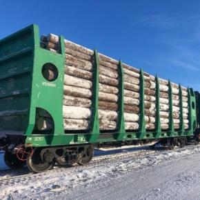 Arkhbum LLC received a new batch of Tikhvin flat wagons