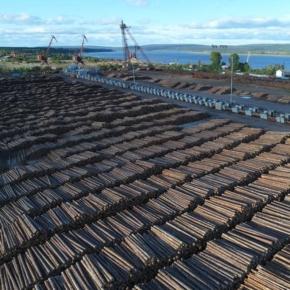 Segezha Group acquires Novoyeniseiskiy Wood Chemical Complex