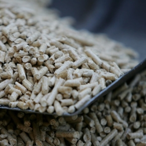 Wood pellets export from Russia increased by 25.6% in January 2021