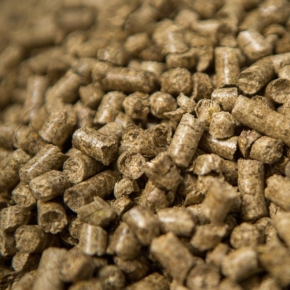 Germany: In April 2021, the average price of pellets decreased by 7.8%