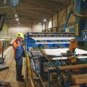 Stora Enso abandoned the intention to expand its production facilities in the Novgorod region