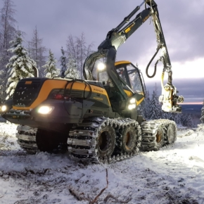 Finland increased logging in February 2021