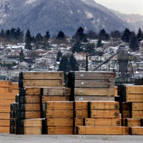 US sawn timber prices show all-time highs