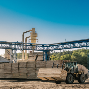 Eacom Timber Corporation invests $8.9M in Elk Lake (Canada) sawmill upgrade