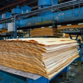 Association of Furniture and Woodworking Enterprises of Russia proposed to include birch veneer and particleboard in the list of goods subject to compulsory registration in EGAIS Les system