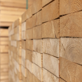 US sawn timber prices continue to rise