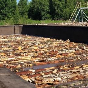 Sveza Mill in Sverdlovsk region to invest RUB 100 million in reconstruction of raw material heating system