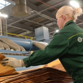 Segezha Group to increase the capacity of Vyatsky Plywood Mill by a third