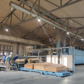 A plant in Udmurtia will invest 129.9 million rubles in increasing plywood output