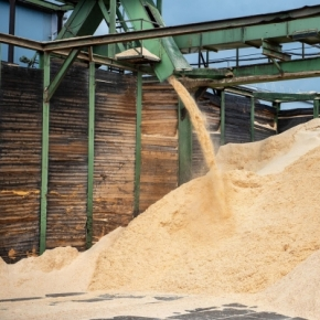 Solomensky Sawmill LLC will increase sawn timber output by 30%