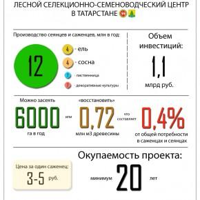 Инфографика: ЛССЦ в Татарстане