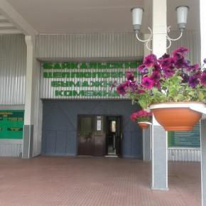 Байкальский ЦБК увеличил в 2011 г. выручку в 2 раза до 2,5 млрд руб.