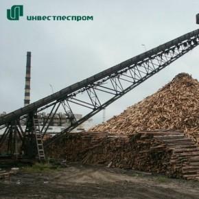 Две компании «Инвестлеспрома» в 2011 г. сократили лесозаготовку на 15%