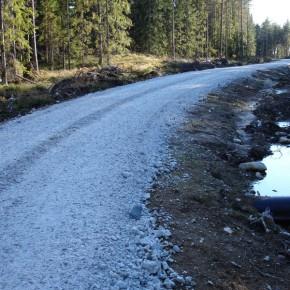 Правительство Югры оценило строительство лесовозных дорог в 12,8 млрд руб