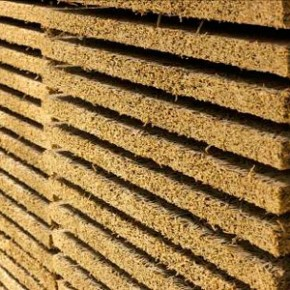 Инвесторы договорились с властями Новгородской области о строительстве завода фибролитовых плит