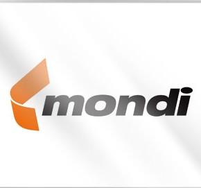 Выручка Mondi Group в 2012 г. составила €5,8 млрд; спрос в России снизился в годовом исчислении