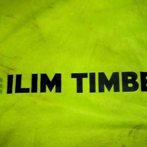 Выручка «Илим Тимбер» в 2012 г. составила $710 млн