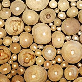 Опубликована программа конференции «Европейский рынок леса»