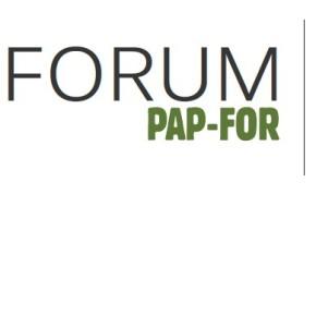 25 идей форума PAP-FOR 2013