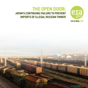 Environmental Investigation Agency обвинила японские компании в закупке продукции из нелегального российского леса