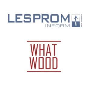 EWD стала генеральным спонсором конференции «ЛесПромИнформа» и WhatWood в Петербурге