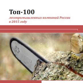ТОП-100 российских компаний ЛПК на 60% обеспечили выручку лесной отрасли