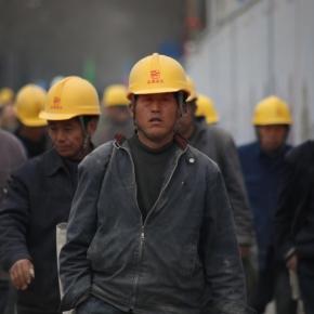 Россия ввела тарифные квоты и установила пошлины на экспорт хвойных круглых лесоматериалов из ДВ ФО