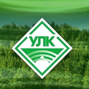 «Устьянский ЛПК» открыл завод по переработке тонкомерной древесины и пеллетное производство