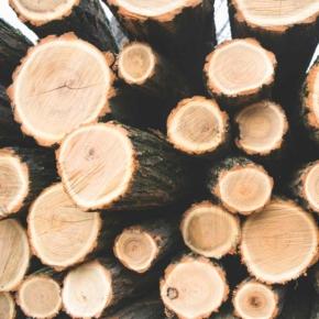 Цены на древесину в Великобритании выросли на 30%