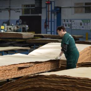 Фанерные комбинаты недополучили на свои производства около 350 тыс. м3 фанкряжа в 2017 г.