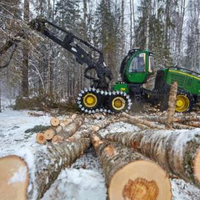 В Красноярском крае стартовал зимний сезон заготовки древесины