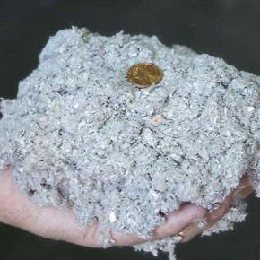 Четверть российских объёмов целлюлозы и пеллет производит леспром Поморья