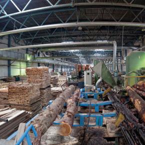В реализацию инвестиционного проекта ООО «Холбит» вложили почти 800 миллионов рублей