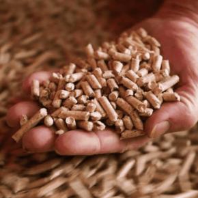 В Калининградской области вложат почти 140 млн рублей в производство биотоплива