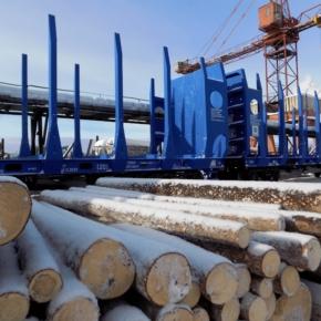 """""""Лузалес"""" реализует проект по строительству лесопильного цеха в местечке Човью"""