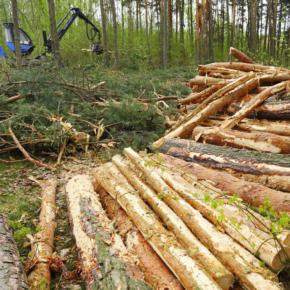 В Ярославской области ведется работа с недобросовестными арендаторами