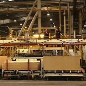 К 2021 году в Шарье будет построен крупнейший в стране завод OSB мощностью более 600 тыс. кубометров в год