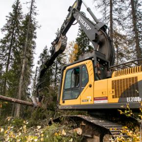 """В январе-феврале 2019 г. заготовка древесины леспромхозами ГК """"Титан"""" превысила 700 тыс. кубометров"""