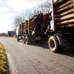 В 2019 г. крупный лесозаготовитель Северо-Запада РФ увеличит объем строительства лесных дорог на 20 %