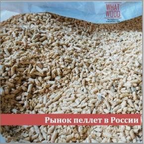 Исследование WhatWood: неиспользуемый сырьевой ресурс позволяет России выпускать 9-10 млн тонн пелллет ежегодно