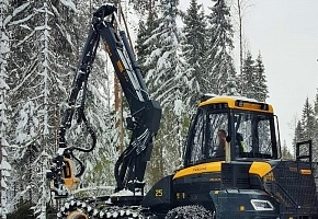 Segezha Group вложила в интенсивное лесопользование 365 млн рублей