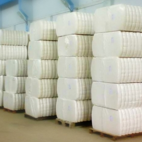 Белорусские деревообрабатывающие предприятия увеличили поставки в Китай до $12,1 млн